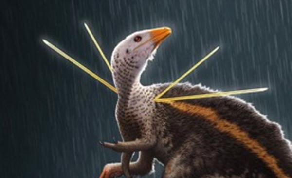 Foto: Bob Nicholls / Paleocreations.com